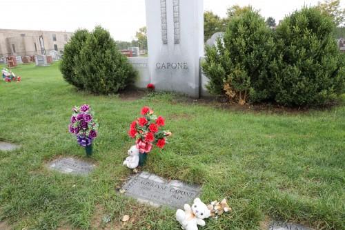 Oak Park's Area's Amazing Cemetery Tours